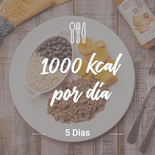 1000 Kcal/dia – 5 dias (Dia Completo) V1