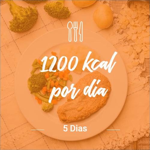 1200 kcal/dia – 5 dias (Dia Completo) V1