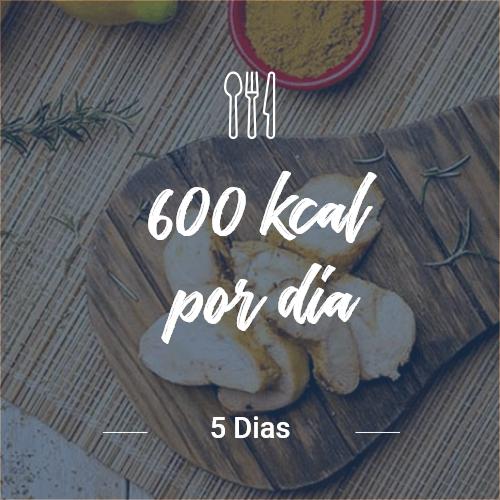 600 kcal/dia – 5 dias (Dia Completo) V1